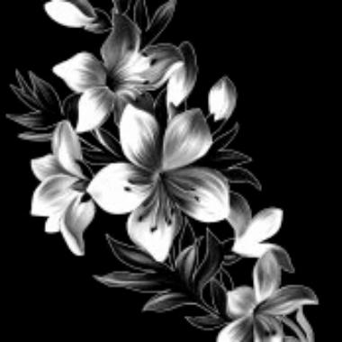engraving 13